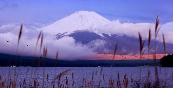 春天的富士山-1