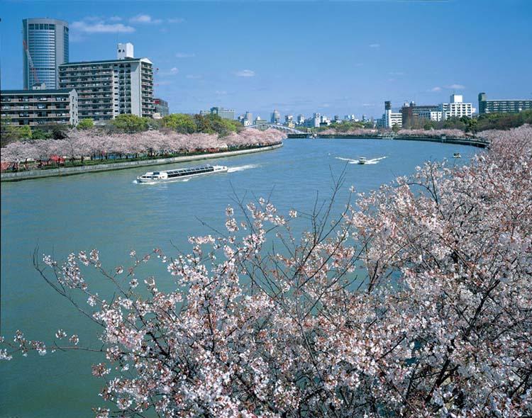 如果排除东京晴空塔和东京塔这两座电波塔
