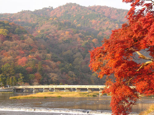 【日本旅游 景点】京都第一名胜,岚山