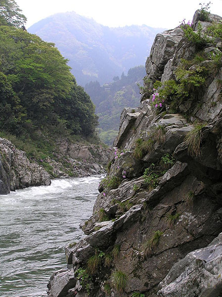 德岛县·大步危溪谷(资料图)