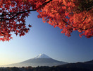 日本留学指南与攻略