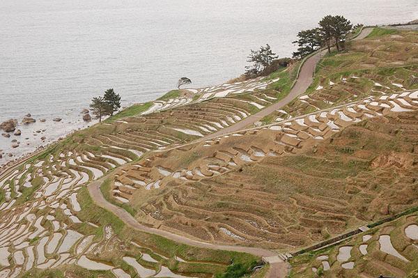 【日本旅游·景点】石川县美景发现:白米千枚
