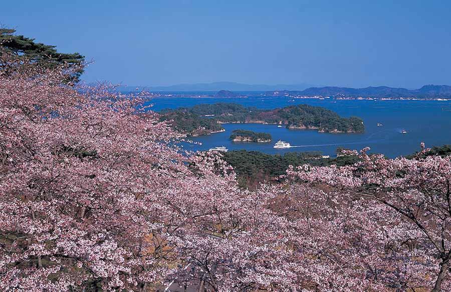松岛,日本三景之一,特别名胜,位于宫城县中央部,是一处由260多个小岛构成的群岛,所在地方叫做松岛湾,松岛湾的旅游景点主要有三大区域:塩竈、松岛、奥松岛。 大大小小的小岛上生长着茂密的松树,与平静的水面相映成趣,游客可以乘坐游船在松岛湾巡游。 前年,作为日本第一处海湾成功加盟世界最美丽海湾俱乐部,为松岛旅游腾飞世界再次增添了砝码。 交通TIPS: 东京乘坐新干线Hayabusa19号(开往新青森方向运行92分钟)/或者乘坐新干线Yamabiko137号(开往仙台方向运行约124分钟)仙台换乘JR东北本线(