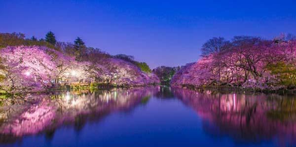 日本手绘风景图