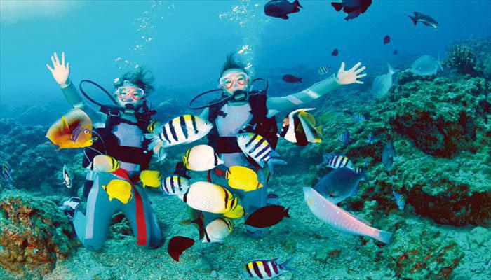 壁纸 海底 海底世界 海洋馆 水族馆 桌面 700_400