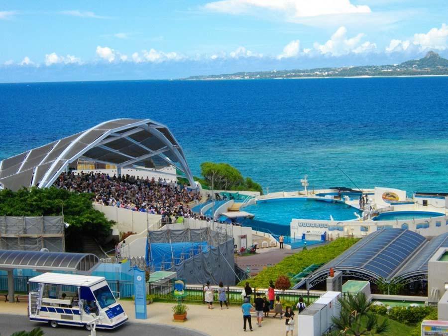 【日本旅游】冲绳自由行必去景点:冲绳美海水族馆