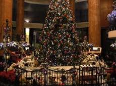 圣诞节前夜东京节日气氛浓厚