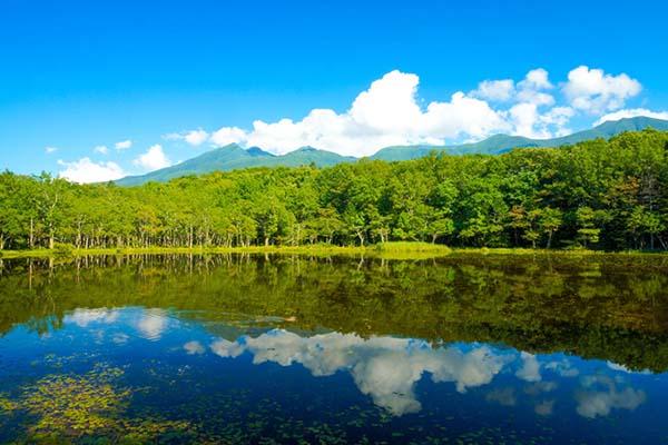 【日本旅游攻略·北海道自由行】知床五湖
