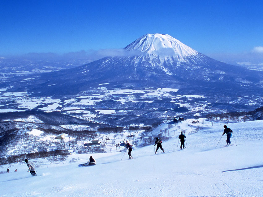 日本旅游攻略:夏天去北海道簇拥花海,冬天去雪野里打个滚儿