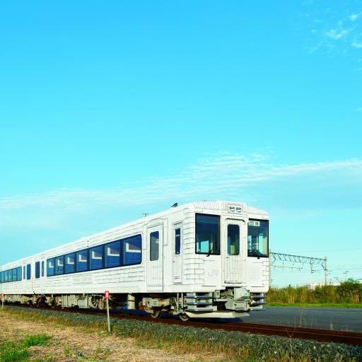 东北美食列车