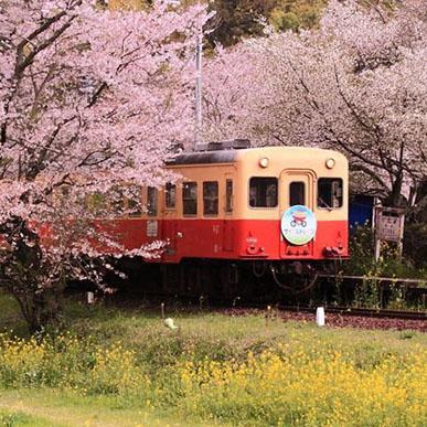 中日攝影俱樂部·凝固沿途的風景--日本頻道--人民網