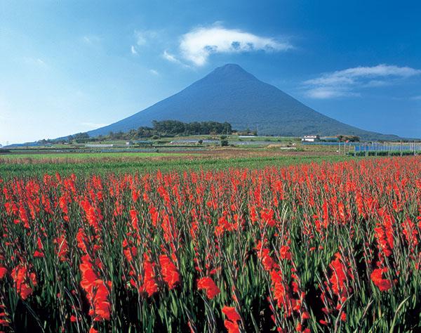 日本旅游攻略九州行·鹿儿岛天然秀色的诱惑