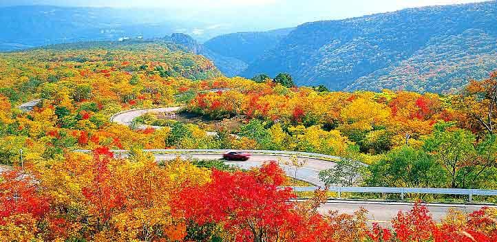 外国游客租车自驾游趋热 平板租赁试点扩大到日本东北全境助力自驾游