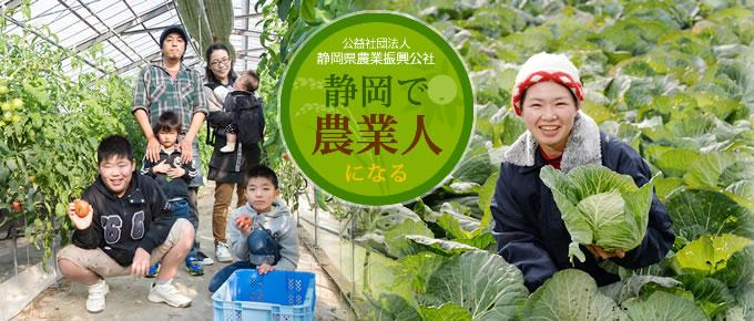 日本静冈县将设立日本首个农业职业大学