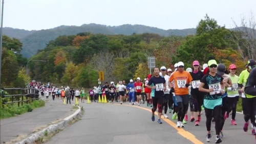"""日本北海道大沼湖畔举办""""大沼Great Run·walk""""长跑步行比赛"""
