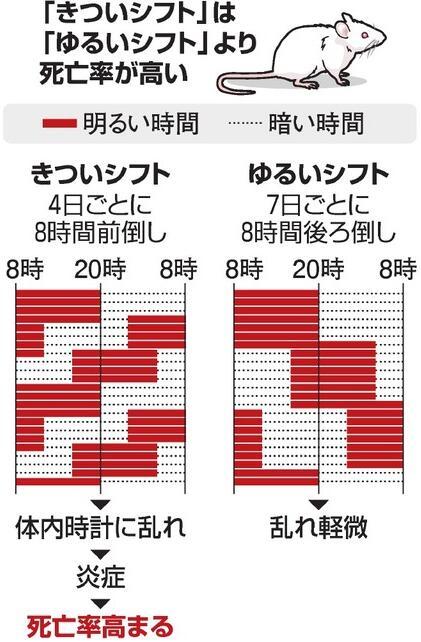 日本研究:频繁昼夜颠倒致使死亡率升高