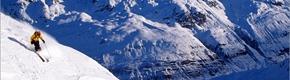 16-17雪季 第一届日本滑雪节