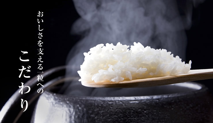 2018日本迎大米种植政策调整初年 食用大米种植面积与上年持平