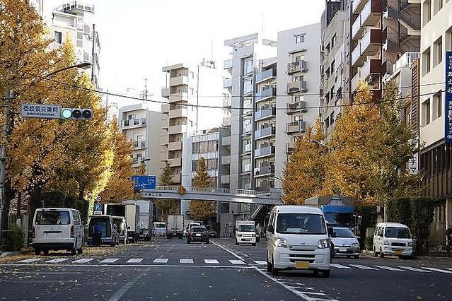 日本人不擅长开车的原因是?道路状况好 心里不着急