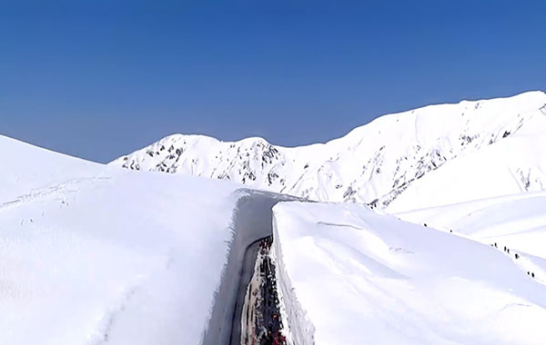 立山黑部阿尔卑斯山脉路线区间开通 今年力争游客达100万人次