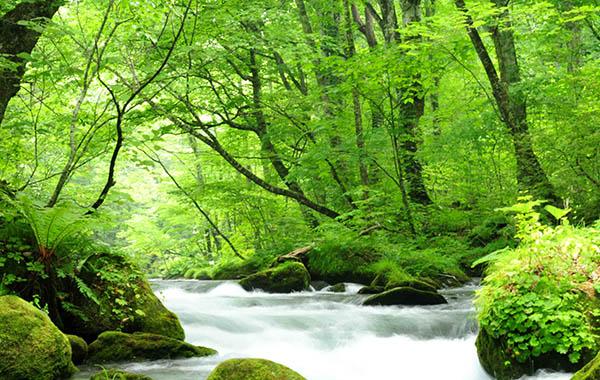 盘点日本东北6县的隐秘人气景点 体验不一样的自然与历史