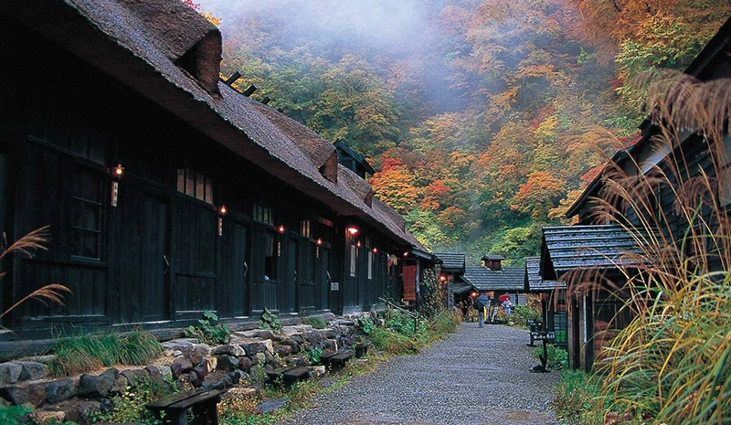 日本东北旅游动态
