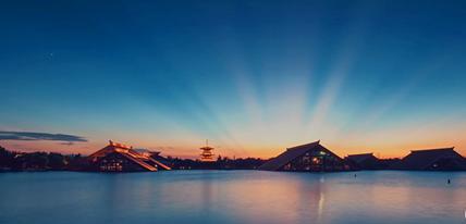 """小视频中的""""上海进口博览会"""""""