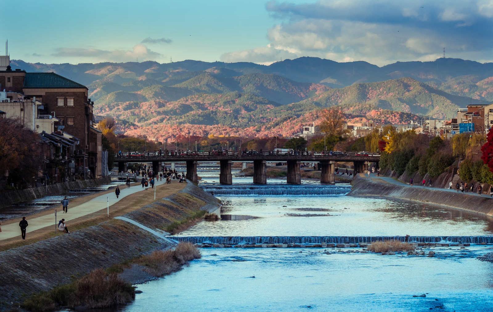 中国人游日本摄影大赛作品:鸭川掠影