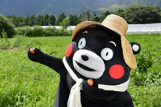 日本人气吉祥物熊本熊欲参与东京奥运圣火传递遭拒