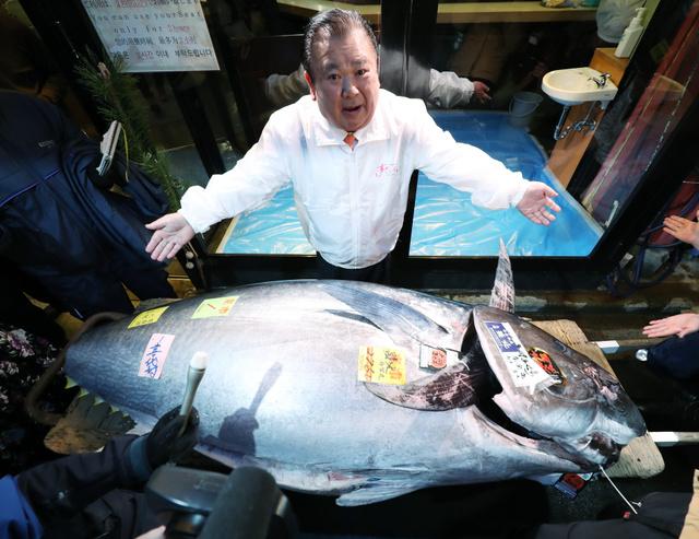东京丰州市场一条275公斤重的金枪鱼拍卖价高达2亿日元