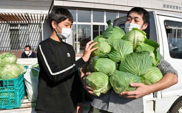 """日本静冈县""""抱圆白菜""""大赛能抱多少给多少"""