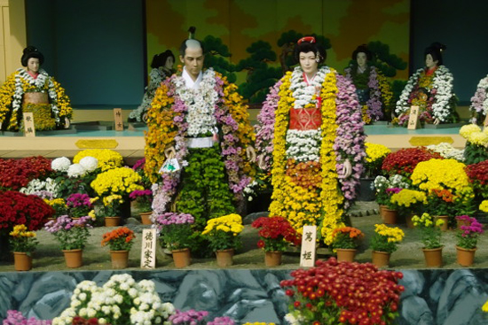 Image Result For Flower And Garden Show